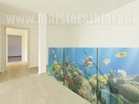 Rafa koralowa, ryby, świat podwodny