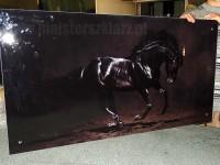 Panele szklane do pokoju motyw czarnego konia